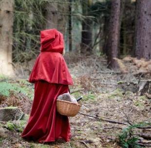 Красная Шапочка (аудиоспектакль) -