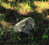 Молчаливый камень