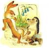 Заяц и ёж