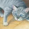 Кот Васька